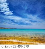 Купить «Menorca Son Saura beach in Ciutadella turquoise color at Balearic islands», фото № 28496379, снято 25 мая 2013 г. (c) Ingram Publishing / Фотобанк Лори