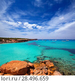 Купить «Formentera Cala Saona beach one of the best beaches in world near Ibiza», фото № 28496659, снято 16 августа 2018 г. (c) Ingram Publishing / Фотобанк Лори