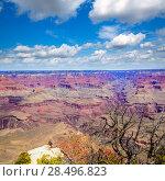 Купить «Arizona Grand Canyon National Park Yavapai Point USA», фото № 28496823, снято 13 апреля 2013 г. (c) Ingram Publishing / Фотобанк Лори