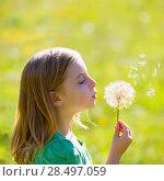 Blond kid girl blowing dandelion flower in green meadow outdoor profile view. Стоковое фото, фотограф Tono Balaguer / Ingram Publishing / Фотобанк Лори