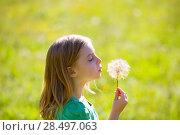 Купить «Blond kid girl blowing dandelion flower in green meadow outdoor profile view», фото № 28497063, снято 5 октября 2013 г. (c) Ingram Publishing / Фотобанк Лори