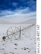 Купить «Cereal fields with irrigation wheels with snow in Nevada USA», фото № 28497147, снято 16 апреля 2013 г. (c) Ingram Publishing / Фотобанк Лори