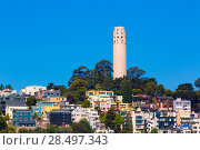 Купить «Coit Tower San Francisco California in a blue sky day USA», фото № 28497343, снято 20 апреля 2013 г. (c) Ingram Publishing / Фотобанк Лори