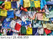 Купить «Республика Калмыкия. Элиста. Разноцветные флажки на заборе у будийского храма», эксклюзивное фото № 28498959, снято 29 апреля 2018 г. (c) Литвяк Игорь / Фотобанк Лори