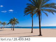 Купить «Alicante Postiguet beach at Mediterranean sea in Spain valencian community», фото № 28499843, снято 21 января 2014 г. (c) Ingram Publishing / Фотобанк Лори