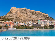 Купить «Alicante Postiguet beach and castle Santa Barbara in Spain Valencian Community», фото № 28499899, снято 21 января 2014 г. (c) Ingram Publishing / Фотобанк Лори