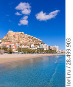 Купить «Alicante Postiguet beach and castle Santa Barbara in Spain Valencian Community», фото № 28499903, снято 21 января 2014 г. (c) Ingram Publishing / Фотобанк Лори