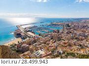 Купить «Alicante skyline aerial view from Santa Barbara Castle in Spain», фото № 28499943, снято 21 января 2014 г. (c) Ingram Publishing / Фотобанк Лори
