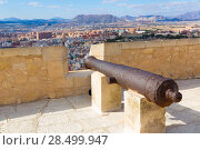 Купить «Alicante skyline and old canyons of Santa Barbara Castle in Spain», фото № 28499947, снято 21 января 2014 г. (c) Ingram Publishing / Фотобанк Лори