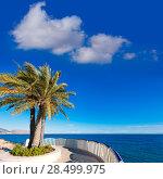 Купить «Altea beach balconade typical white Mediterranean village Alicante of Spain», фото № 28499975, снято 23 января 2014 г. (c) Ingram Publishing / Фотобанк Лори