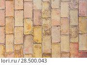 Купить «Clay ancient brick flooring texture in Alicante castle of Spain», фото № 28500043, снято 21 января 2014 г. (c) Ingram Publishing / Фотобанк Лори