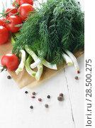 Купить «Fresh organic vegetable set of tomatoes dill and onion on white kitchen table», фото № 28500275, снято 24 апреля 2013 г. (c) Ingram Publishing / Фотобанк Лори