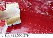 Купить «Human arm with sponge soap washing red car surface», фото № 28500279, снято 1 августа 2013 г. (c) Ingram Publishing / Фотобанк Лори