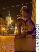 Купить «Night winter Rynok Square in Lviv city, Ukraine», фото № 28530535, снято 10 декабря 2017 г. (c) Юрий Брыкайло / Фотобанк Лори