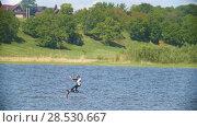 Купить «Young woman kitesurfer moving on the river on the kiteboard», видеоролик № 28530667, снято 18 июня 2019 г. (c) Константин Шишкин / Фотобанк Лори