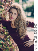 Купить «Beautiful woman with long blond curly hair in urban background», фото № 28533347, снято 14 ноября 2015 г. (c) Ingram Publishing / Фотобанк Лори