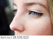 Купить «Close-up shot of young woman's eye. Woman with blue eyes.», фото № 28535023, снято 23 апреля 2017 г. (c) Ingram Publishing / Фотобанк Лори