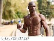 Fit shirtless young black man drinking water after running in urban background. Young male exercising with naked torso listening to music with headphones. Стоковое фото, фотограф Javier Sánchez Mingorance / Ingram Publishing / Фотобанк Лори