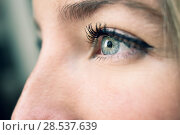 Купить «Close-up shot of young woman's eye. Woman with blue eyes.», фото № 28537639, снято 23 апреля 2017 г. (c) Ingram Publishing / Фотобанк Лори