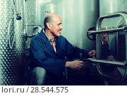 Купить «mature man working in wine fermentation section», фото № 28544575, снято 13 декабря 2019 г. (c) Яков Филимонов / Фотобанк Лори
