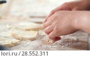 Купить «Female hands forms homemade pancakes from cottage cheese», видеоролик № 28552311, снято 17 июля 2019 г. (c) Константин Шишкин / Фотобанк Лори