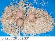 Купить «Натюрморт с куриными яйцами на деревянной стружке», фото № 28552331, снято 4 июня 2018 г. (c) V.Ivantsov / Фотобанк Лори