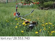 Купить «Триммер мотокоса лежит на зеленой траве. Бензокоса лежит на дворе заросшем травой и одуванчиками», фото № 28553743, снято 28 апреля 2018 г. (c) Александров Никита / Фотобанк Лори