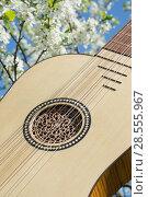 Купить «Vihuela de mano of the 16th century», фото № 28555967, снято 13 мая 2018 г. (c) Дмитрий Черевко / Фотобанк Лори