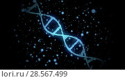 Купить «3d rendering of virtual dna molecule over black», видеоролик № 28567499, снято 24 августа 2019 г. (c) Syda Productions / Фотобанк Лори