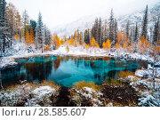 Купить «Fantastic blue geyser lake in the autumn forest. Altai, Russia.», фото № 28585607, снято 24 сентября 2017 г. (c) Евгений Глазунов / Фотобанк Лори