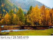 Купить «Beautiful landscape in autumn. Mountains with colorful autumn forest at overcast.», фото № 28585619, снято 23 сентября 2017 г. (c) Евгений Глазунов / Фотобанк Лори