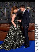 Купить «Fantastic Beasts UK Premiere held at Cineworld Leicester Square. Featuring: Eddie Redmayne, Hannah Bagshawe Where: London, United Kingdom When: 15 Nov 2016 Credit: Daniel Deme/WENN.com», фото № 28587999, снято 15 ноября 2016 г. (c) age Fotostock / Фотобанк Лори