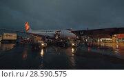 Купить «Baggage loading into Czech Airlines plane at night, Sheremetyevo Airport», видеоролик № 28590575, снято 30 октября 2017 г. (c) Данил Руденко / Фотобанк Лори