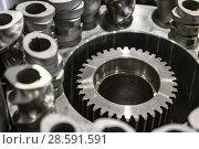 Купить «Steel cogwheels, spur gears.», фото № 28591591, снято 25 января 2017 г. (c) Андрей Радченко / Фотобанк Лори