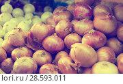 Купить «Different onion varieties», фото № 28593011, снято 22 октября 2017 г. (c) Яков Филимонов / Фотобанк Лори