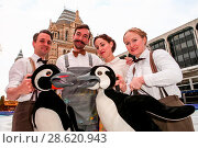 Купить «The cast of Mr. Popper's Penguins prepare for their West End debut by getting their skates on at The Natural History Museum Ice Rink. The show is on at...», фото № 28620943, снято 23 ноября 2016 г. (c) age Fotostock / Фотобанк Лори
