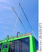Купить «Штанги зеленого троллейбуса на фоне синего неба», фото № 28628671, снято 27 мая 2010 г. (c) FMRU / Фотобанк Лори