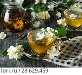 Aromatic hot Jasmine tea in kettle and cups, near spoons. Стоковое фото, фотограф Сергей Молодиков / Фотобанк Лори
