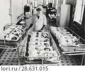 12.01.1976. Ленинград. Родильный дом. 18 младенцев. Редакционное фото, фотограф Retro / Фотобанк Лори