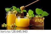 Купить «Two glass jars full of goldish honey, bee honeycombs and Linden flowers isolated on black», фото № 28645943, снято 6 июня 2018 г. (c) Сергей Молодиков / Фотобанк Лори
