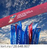 Купить «Official symbols of the 2018 FIFA World Cup in Russia», фото № 28648807, снято 15 июня 2018 г. (c) Владимир Журавлев / Фотобанк Лори
