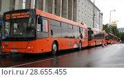 Купить «Автобусы для болельщиков ЧМ 2018 в Калининграде», фото № 28655455, снято 25 июня 2018 г. (c) Ed_Z / Фотобанк Лори