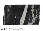 Купить «Кварцевые и кварц-пиритовые прожилки в углеродистых сланцах», фото № 28659399, снято 5 января 2018 г. (c) Анна Зеленская / Фотобанк Лори