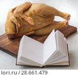 Купить «Book for writing prescriptions beside the goose», фото № 28661479, снято 12 января 2016 г. (c) Олеся Сарычева / Фотобанк Лори