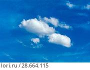 Купить «One simple cloud», фото № 28664115, снято 18 июля 2018 г. (c) Ольга Сапегина / Фотобанк Лори