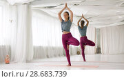 Купить «young woman doing yoga tree pose at studio», видеоролик № 28683739, снято 28 июня 2018 г. (c) Syda Productions / Фотобанк Лори