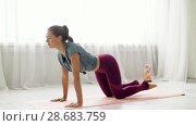 Купить «woman doing upward-facing dog pose at yoga studio», видеоролик № 28683759, снято 28 июня 2018 г. (c) Syda Productions / Фотобанк Лори