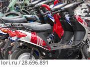 Купить «Электрические скутеры с ключами в замке зажигания на парковке в пункте проката», фото № 28696891, снято 24 июня 2018 г. (c) Наталья Николаева / Фотобанк Лори