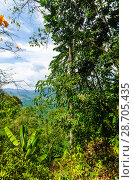 Купить «Живописный вид с горы на поля, джунгли и и долину Краби, Таиланд», фото № 28705435, снято 17 февраля 2013 г. (c) Игорь Рожков / Фотобанк Лори