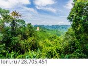 Купить «Живописный вид с горы на поля, джунгли и и долину Краби, Таиланд», фото № 28705451, снято 17 февраля 2013 г. (c) Игорь Рожков / Фотобанк Лори